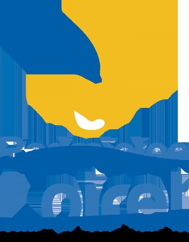 logo comité départemental badminton du Loiret (45)